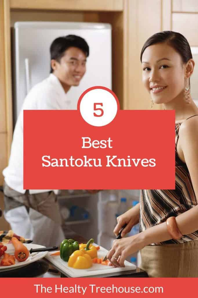 Best Santoku Knife