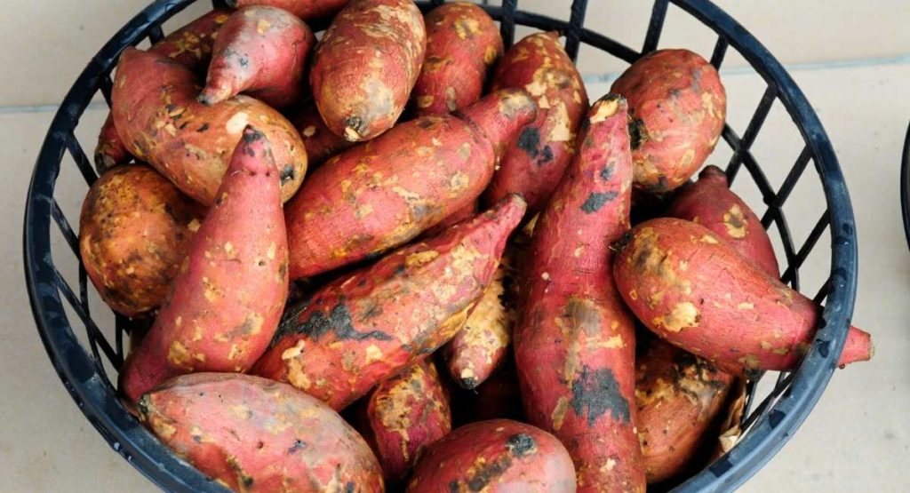 Cinnamon Roasted Sweet Potatoes Recipe