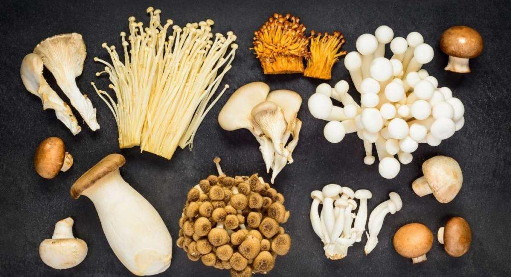 Sweet Potato Stuffed Mushroom Recipe