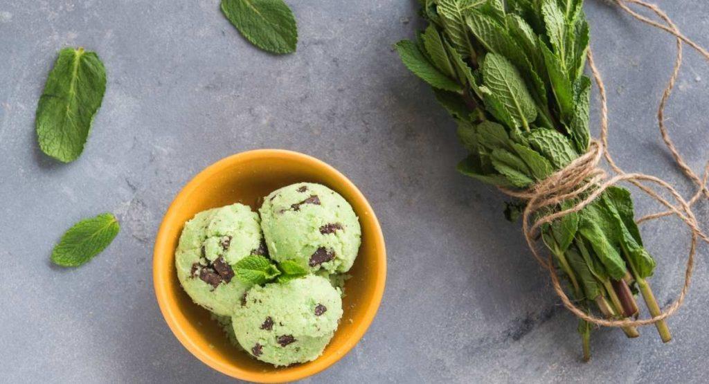 Mint Chocolate Chip Nice Cream Recipe