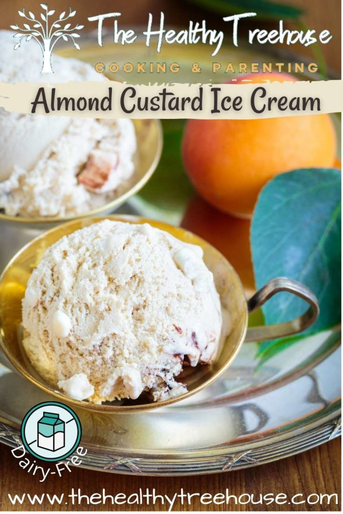 Almond Custard Ice Cream Recipe